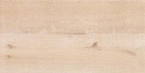 Фасадная керамическая панель Frontek Madera WT302 40,5x100